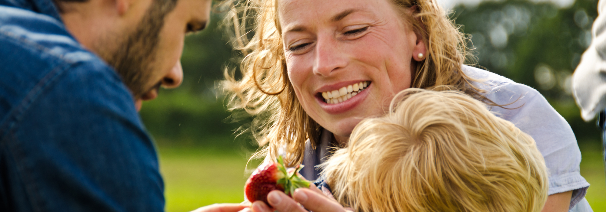 Bio-Erdbeeren-selberernten-Wulksfelde.jpg
